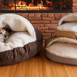 dog-bed-sizes